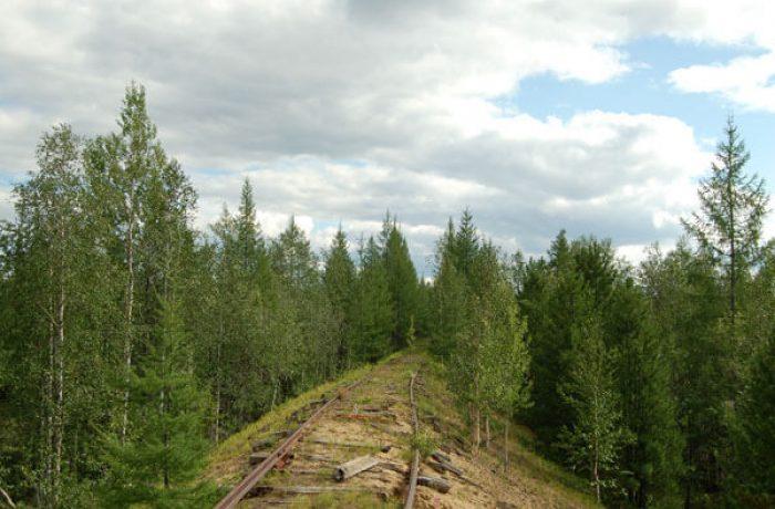 Путь в сторону Игарки