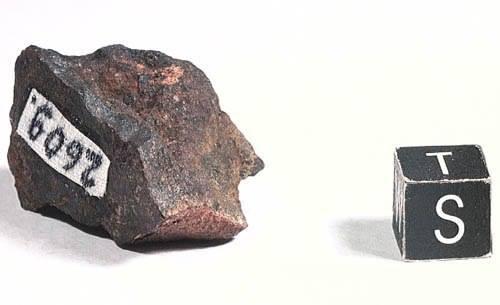 Метеорит Северный Колчим