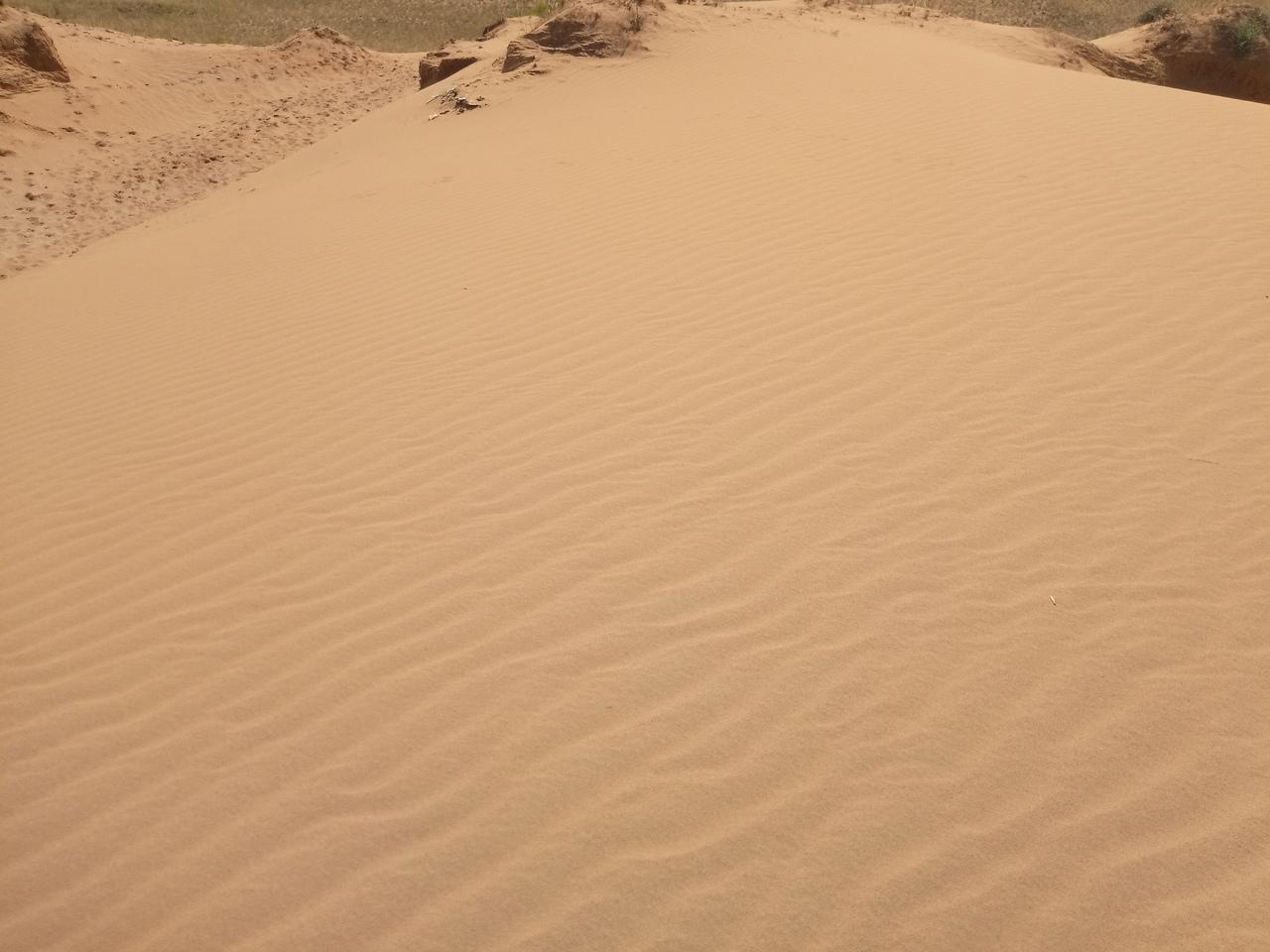 Мини-Сахара в степях Оренбуржья