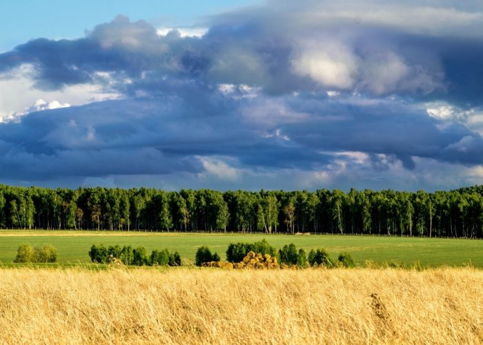 Моя Башкирия, Башкортостан, Башкирия
