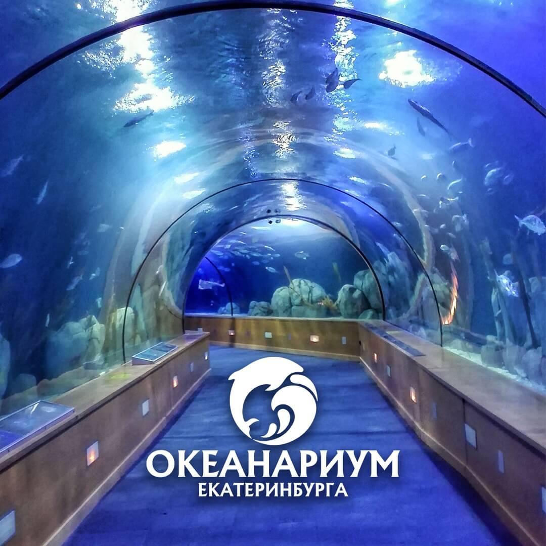 Океанариум, Дельфинарий, Екатеринбург, Свердловская область