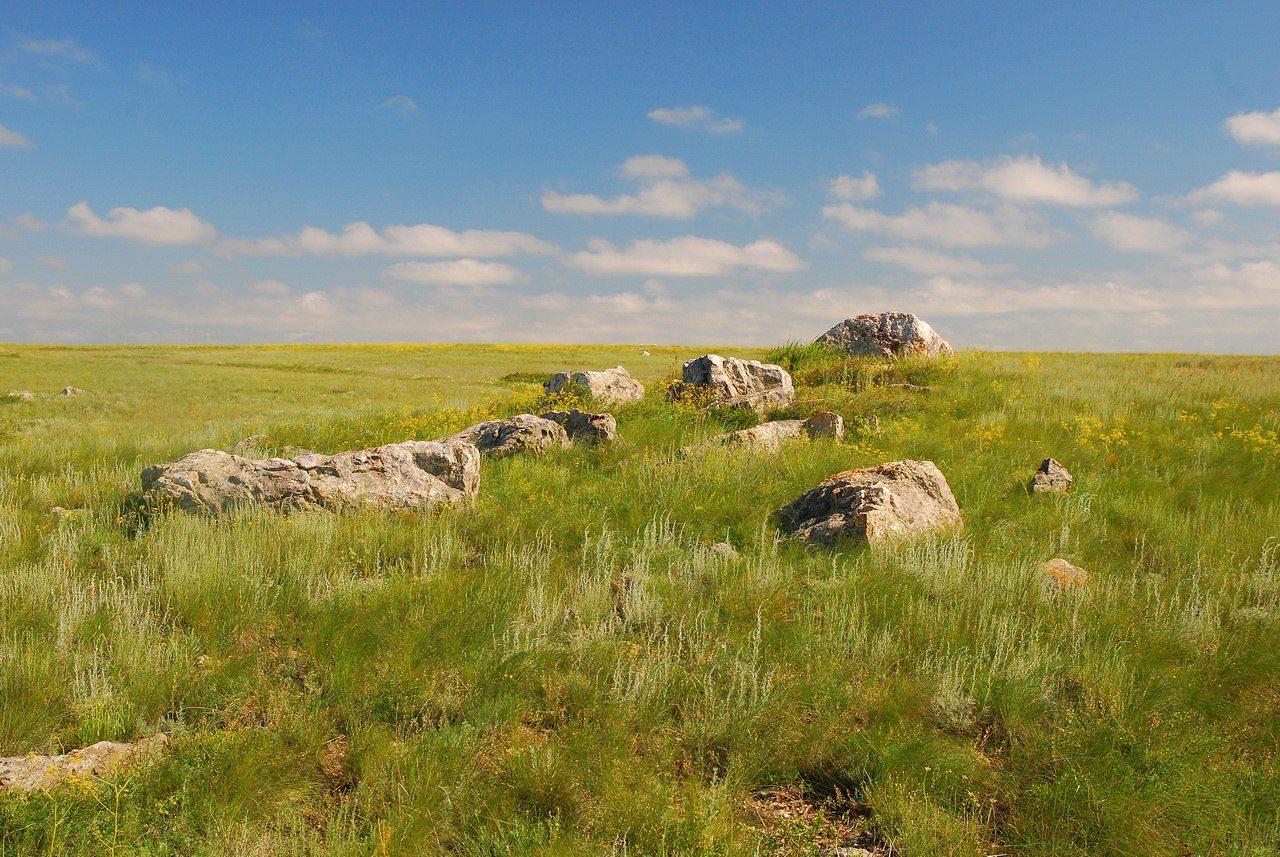Участок «Ащисайская степь» заповедника «Оренбургский». Автор фотографии - А. Кожевникова