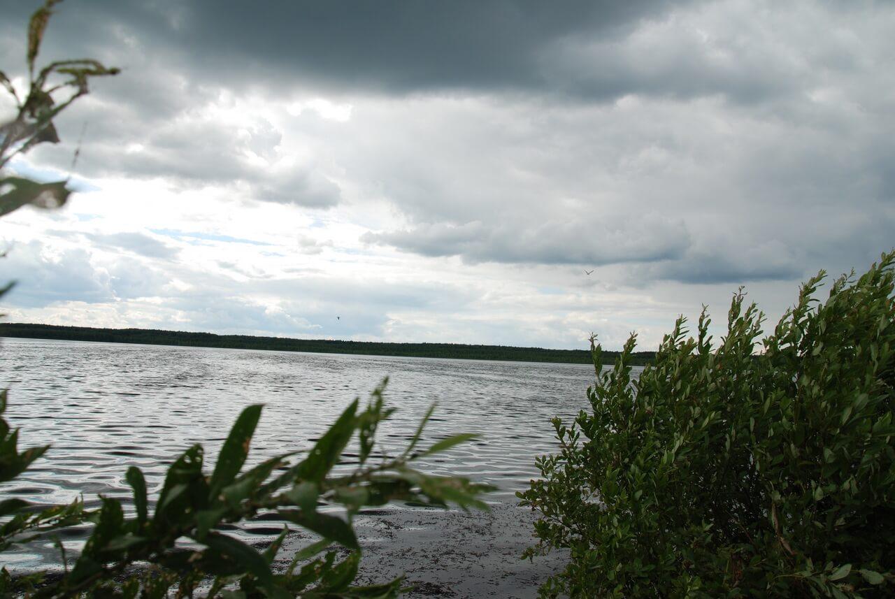 Озеро Беткулово, Сухой Лог, Свердловская область