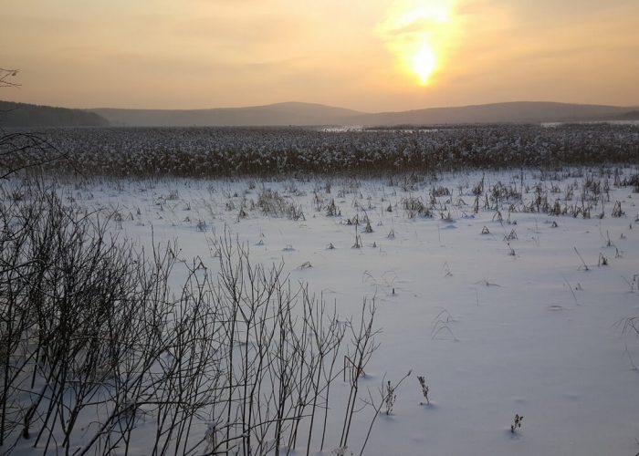 Палкино, Свердловская область