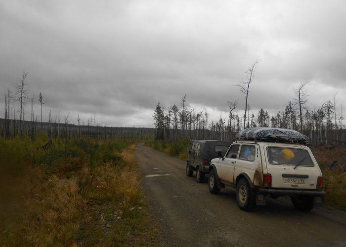 Поселок Вижай, сгоревший полностью в 2010 году в результате лесных пожаров