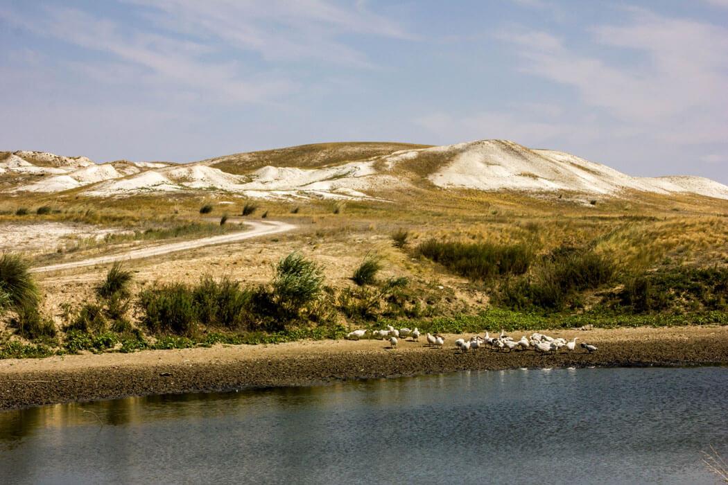 Покровские меловые горы, Оренбургская область