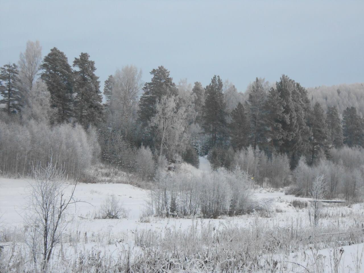 Поселок Дальний, Свердловская область