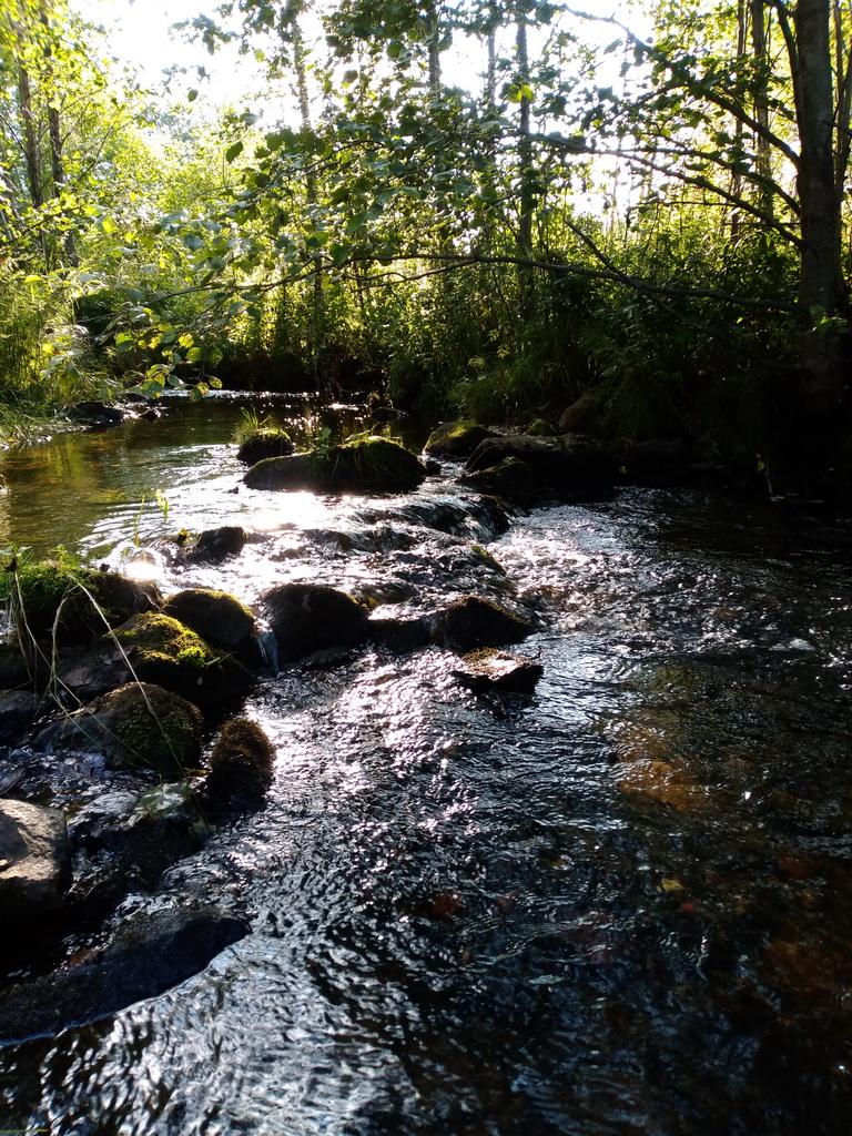 река Большая Гаревая