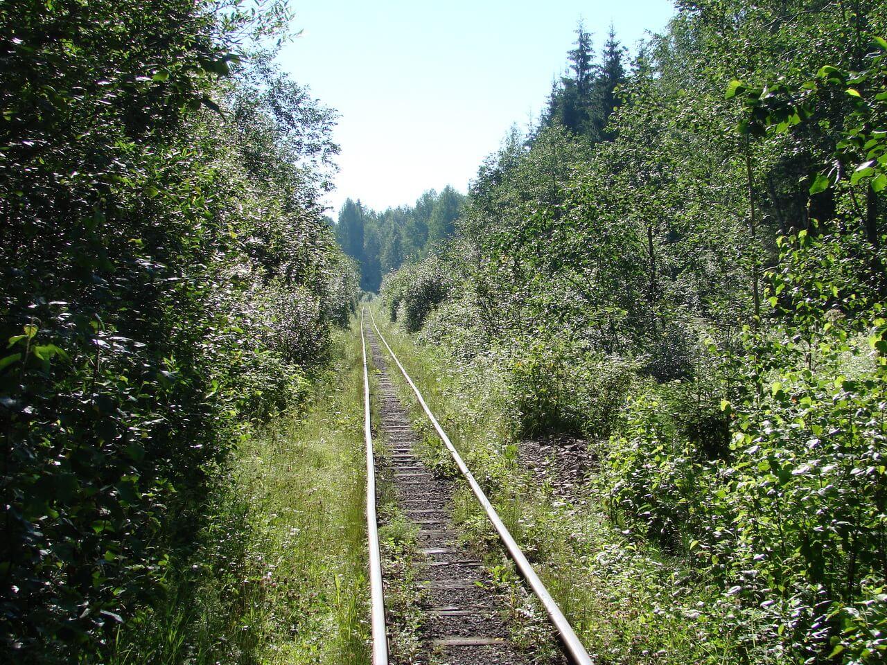 Висимо-Уткинская узкоколейная дорога