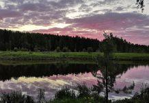 Нижнетуринский пруд – красивый и разнообразный