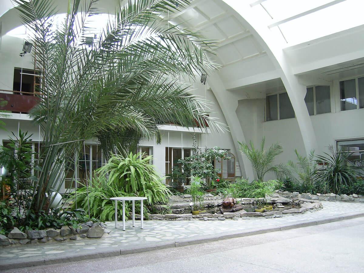 Зимний сад в «Центре культуры и искусства»