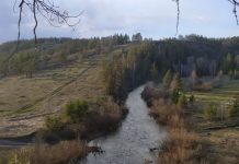 Река Большая Сурень