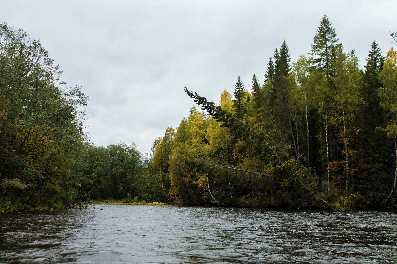 reka-ivdel02
