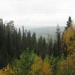 Сабарский ландшафтный заказник, Свердловская область