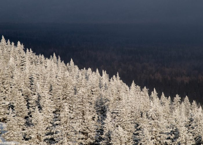 Южный Урал, Зима, Зюраткуль, Челябинская область, Башкирия