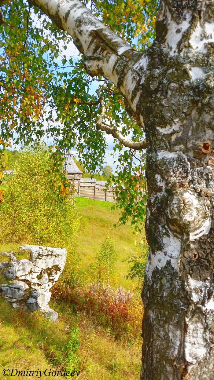 Береза, останец, стена п. Загубашка