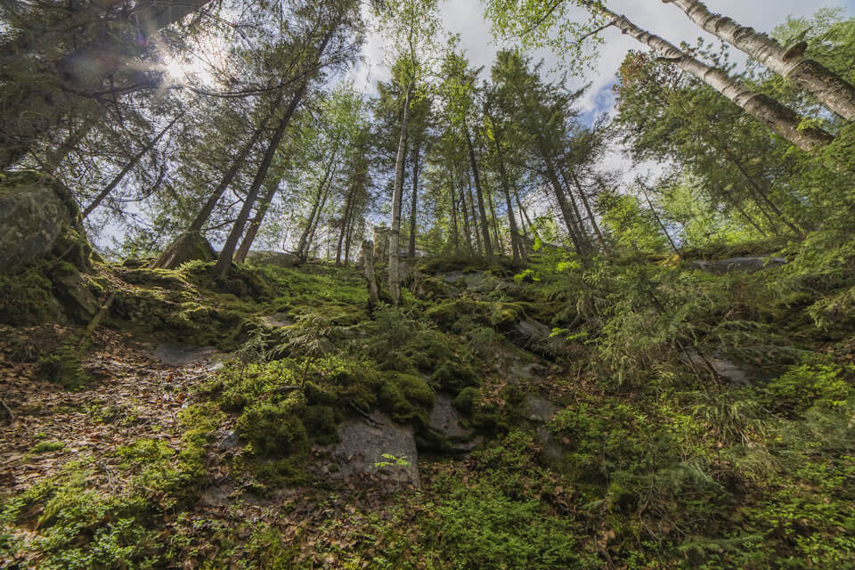 Шумихинские скалы, Пермский край
