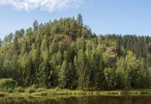 Гора Соколья, древний вулкан, Пермский край