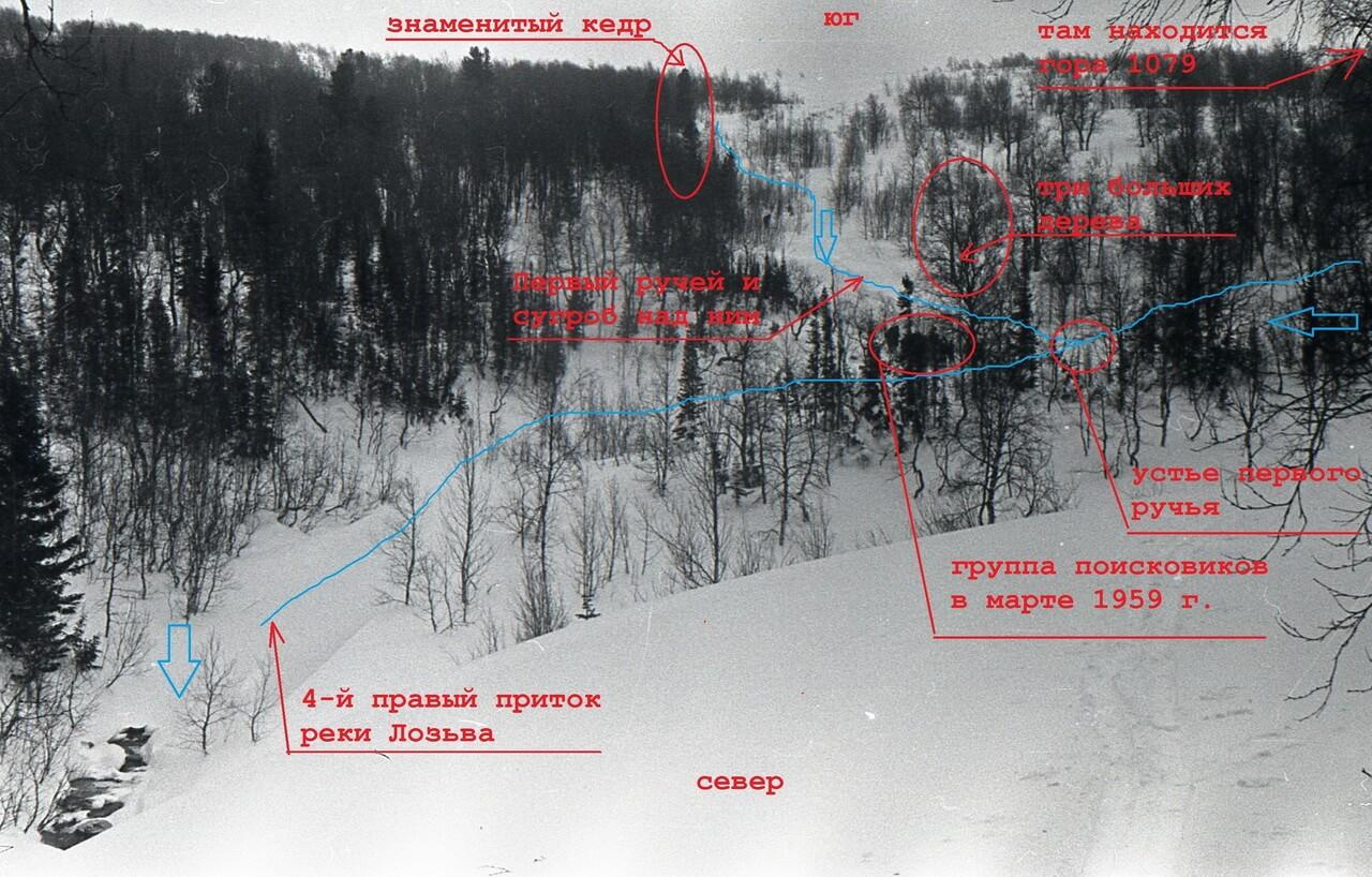 Рисунок 8 Устье первого ручья_сугроб_кедр
