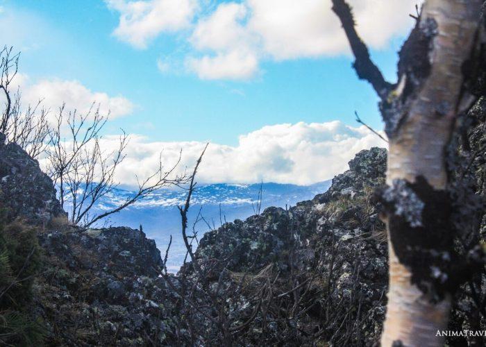 Сухогорский камень, Свердловская область