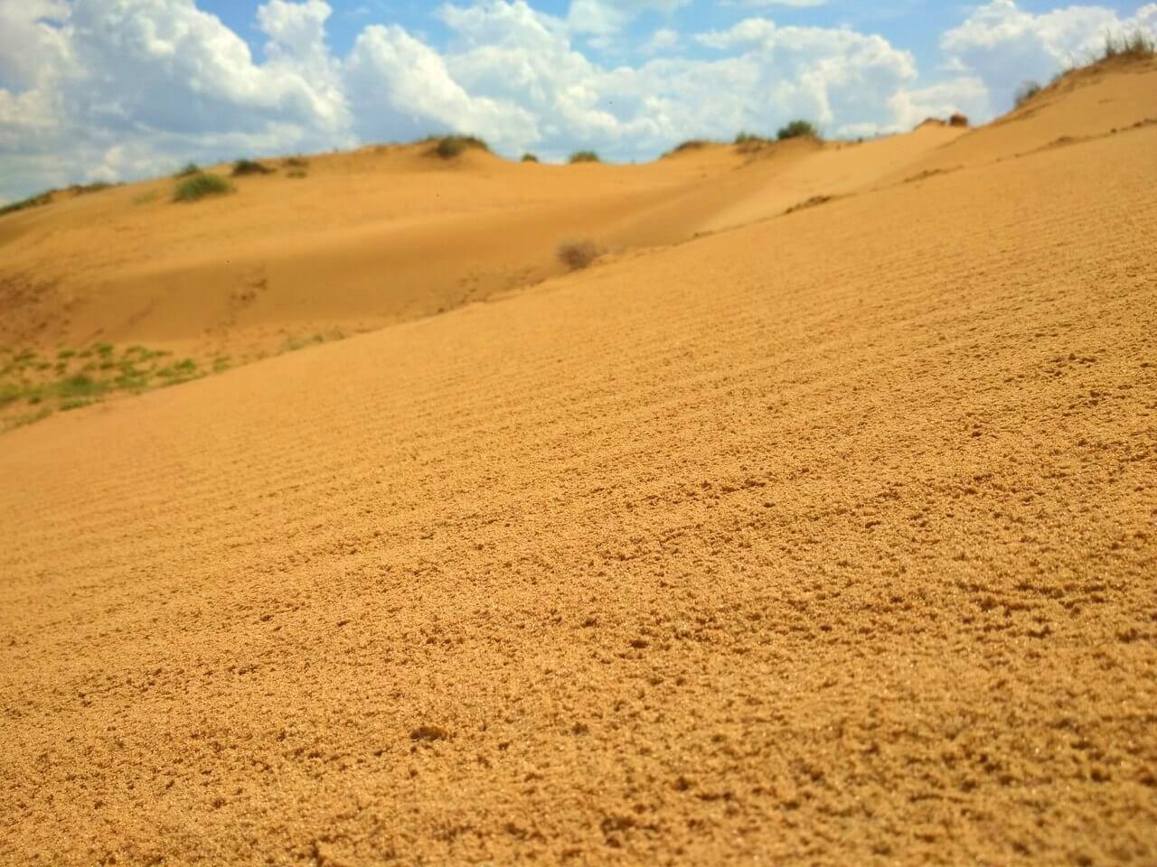 Долина песков и хвои