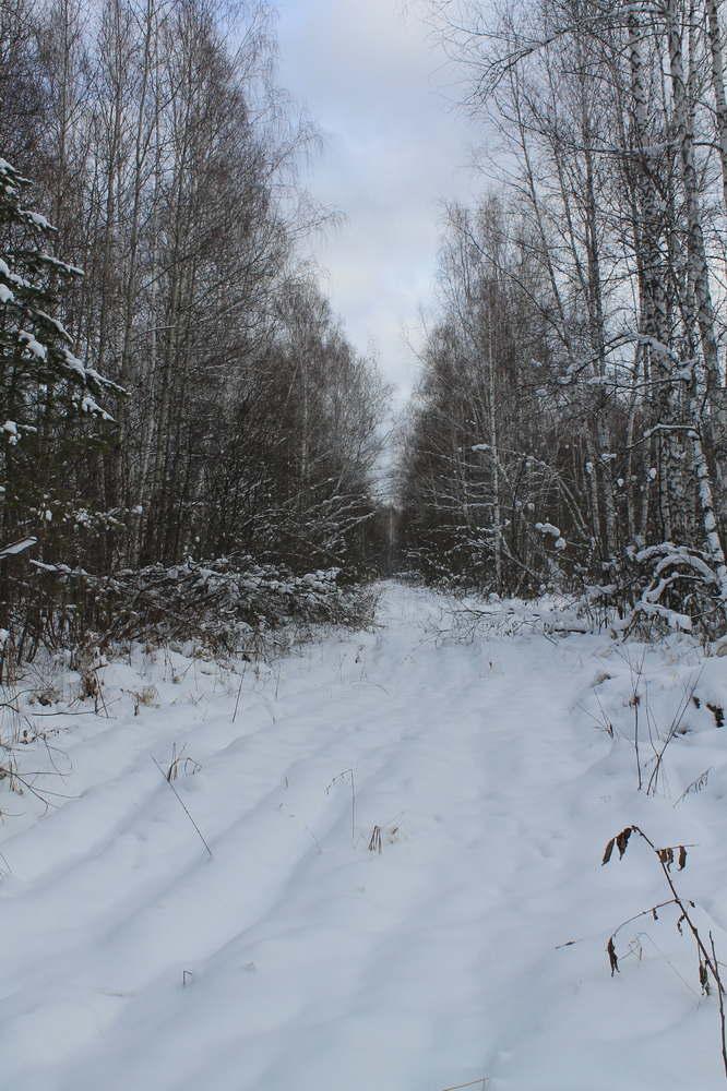 Так сейчас выглядит старая дорога: по направлению в Сибирь и в Россию