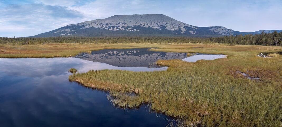 Тыгынские болота