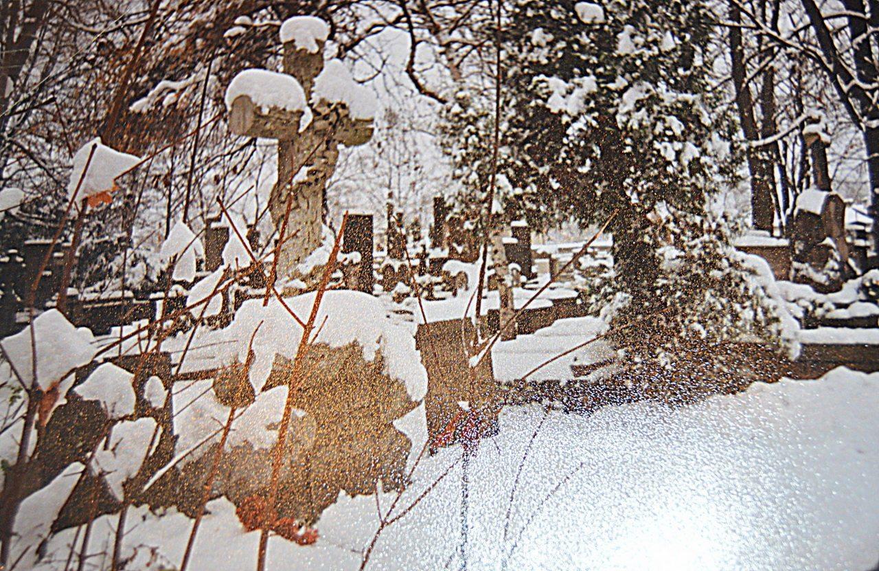 Это могила Викентия Альфоносовича Поклевских-Козелл в Польше