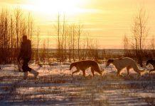 Уральская охота