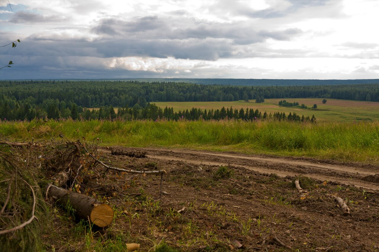 Урочище Воробьи, Свердловская область