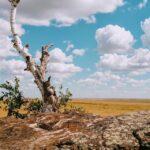Оренбургская область, Акбулак, малые города, гора Алеутас, Святой камень, маршрут выходного дня, лето на Урале, легенды Урала,