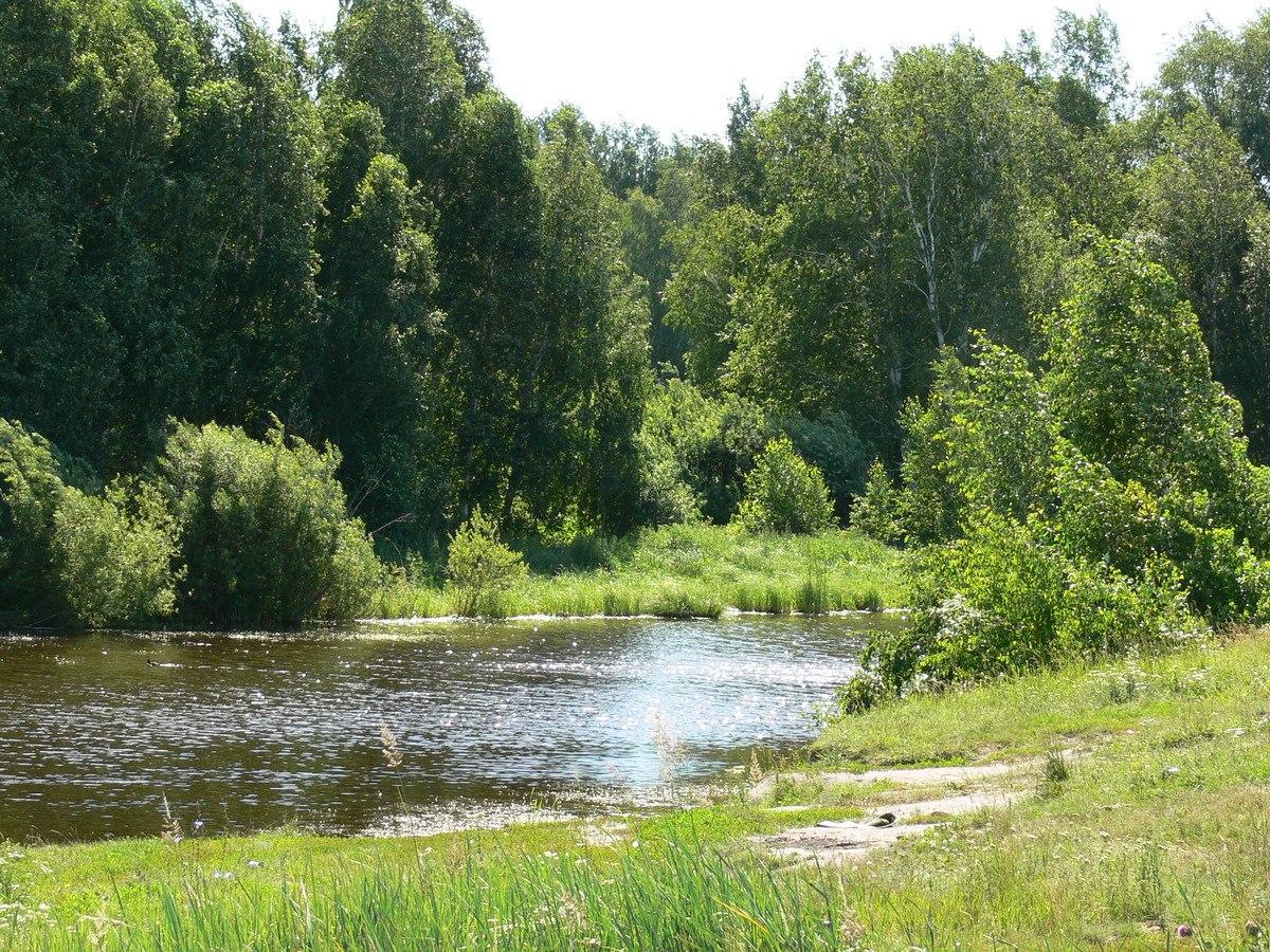Курганская область, заповедные зоны Урала, Курганский природный заказник, река Тобол, река Уй