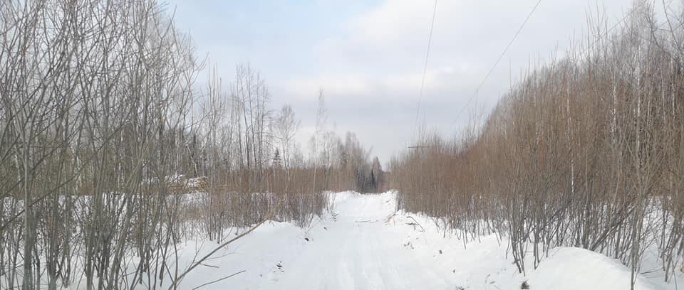 зимник Махнёво-Меркушино2